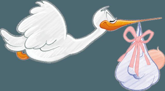 prenatal insurance singapore
