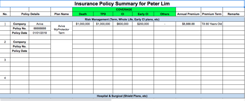 insurance policy summary
